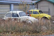 miss hilda vw 1966 bug vintage vw bugs